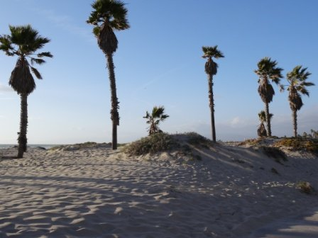 Desert-type dunes