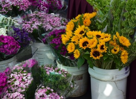 Cut flowers at the Farmers Market