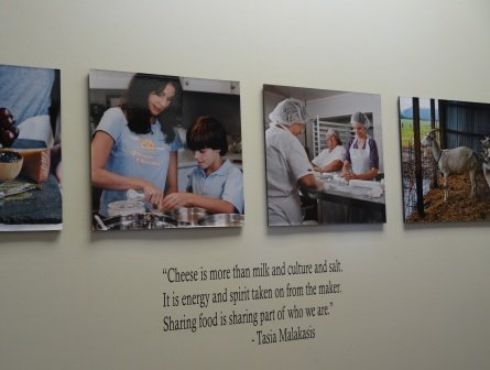 Tasia quote and photos