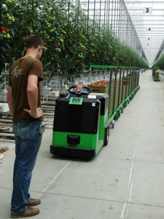 True Green Greenhouses (27)